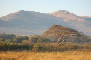 africa2009 206